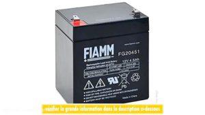 باتری های AGM FG20451 12V 45Ah فیام ایتالیا